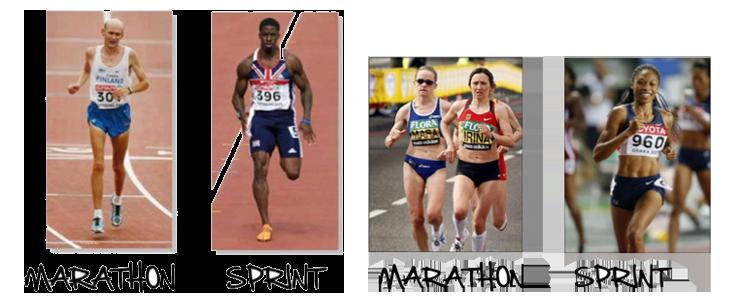 Sprint Into Spring!