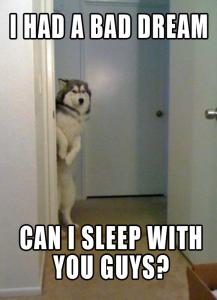 Bad Dream Meme